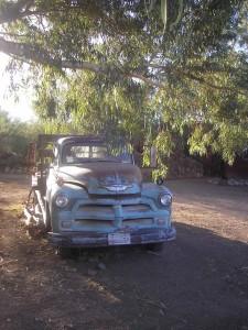 Old Chevy Truck, Carrol Steele's B&B, AZ