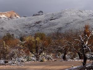 snow 2013 Tucson