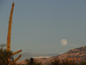 Moonrise over Tucson
