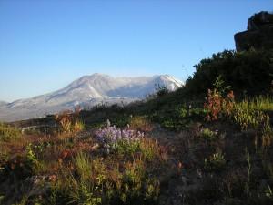 Mt. Saint Helen's, Oregon