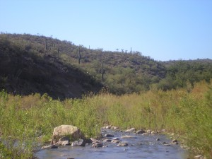 Arivipa Canyon, AZ
