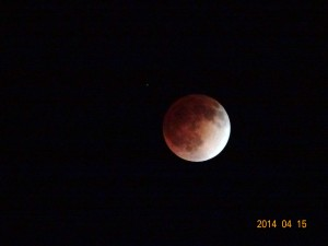 April 15 2014 Lunar eclipse