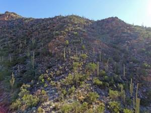 Mt. Lemmon Arizona By Drone
